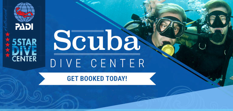 Aruba Diving Tours